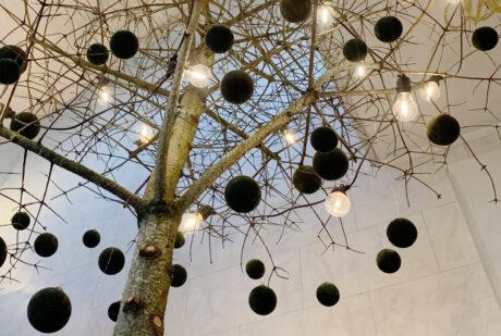 træ med lys Hindsgavl Slot